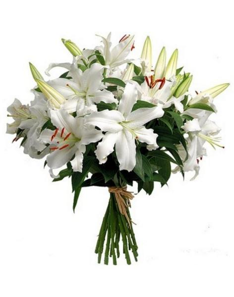 Bouquet of 15 lilies: delivery of flowers in