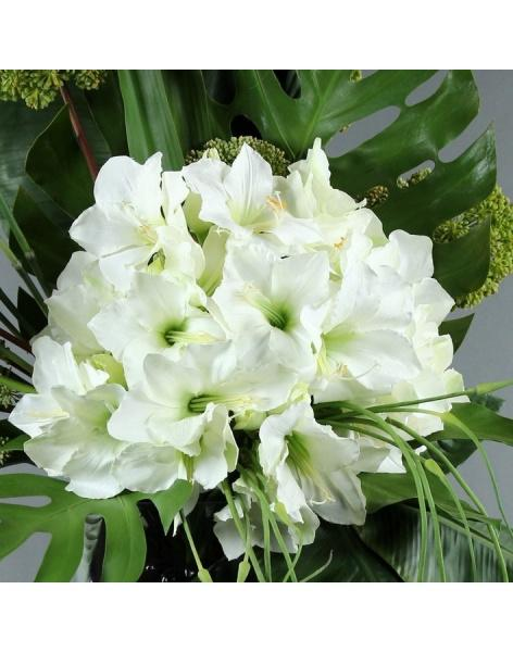 Bouquet of 25 white amariliss: delivery of flowers in