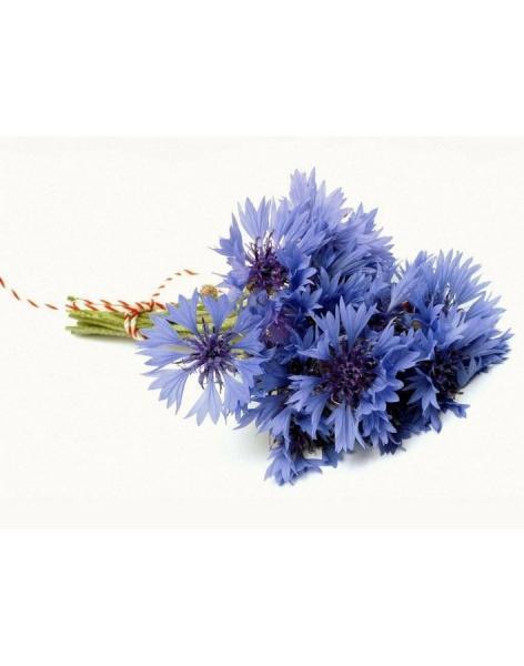 Доставка цветов васильков купить в смоленске цветы искусственные оптом