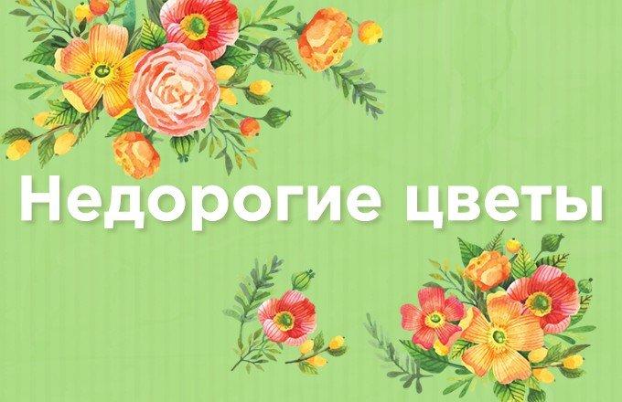 Уральск цветы заказать
