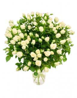 Bouquet of 101 white spray roses | White roses flowers