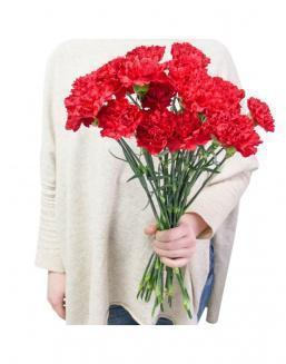 Bouquet of 25 red dianthus | Carnations,lilies