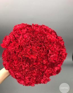 Bouquet of 15 red dianthus | Carnations,lilies