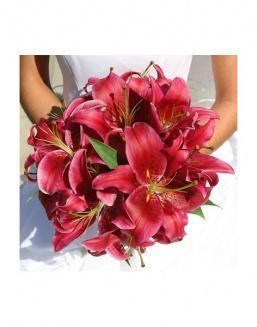 Bouquet of 25 red lilies | Carnations,lilies