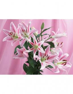 Bouquet of 15 pink lilies | Carnations,lilies