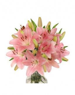 Bouquet of 25 pink lilies | Carnations,lilies