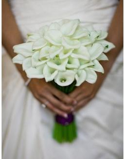 Bouquet of 25 white callas | Flowers for Wedding flowers