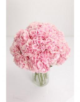 Bouquet of 51 pink hydrangeas | Flowers on Anniversary flowers