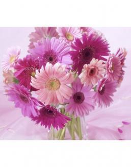 Bouquet of 51 pink asters | Flowers on Anniversary flowers