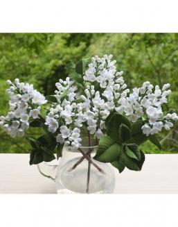 Bouquet of 25 white lilac | Flowers on Anniversary flowers