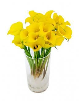 Bouquet of 51 yellow irises | Flowers on Anniversary flowers