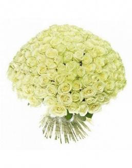 Bouquet of 51 white holland roses | Flowers on Anniversary flowers