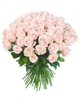 Bouquet of 51 pink Dutch roses | Dutch roses