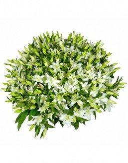 Bouquet of51 white lilies | Carnations,lilies
