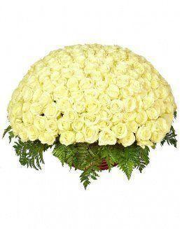 Basket 201 holland roses | Flowers on Anniversary flowers