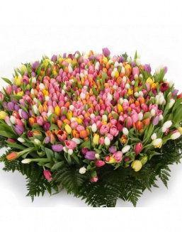 Mix bouquet 501 tulips | Flowers on Anniversary flowers