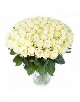 77 high elite white roses | Flowers on Anniversary flowers