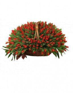 Basket 501 red tulips | Flowers on Anniversary flowers