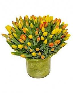 Bouquet 501 yellow tulips | Flowers on Anniversary flowers